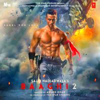 Baaghi 2 By Shreya Ghoshal, Parry G and others... full mp3 album