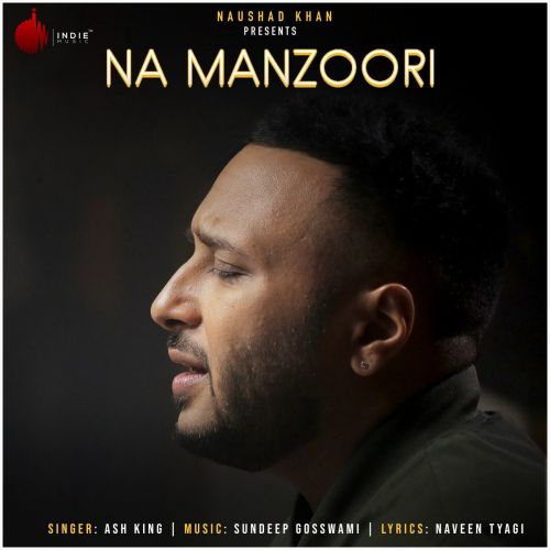 Na Manzoori Ash King mp3 song download, Na Manzoori Ash King full album